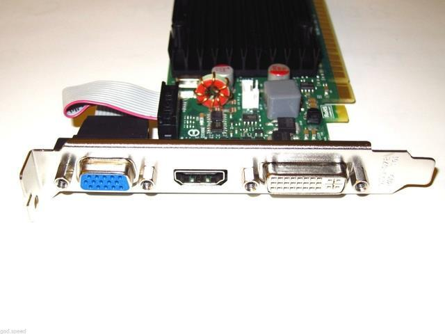 GeForce HD 512MB PCI-E x16 Windows 8 7 Vista XP Linux Video Graphics VGA Card shipping from US