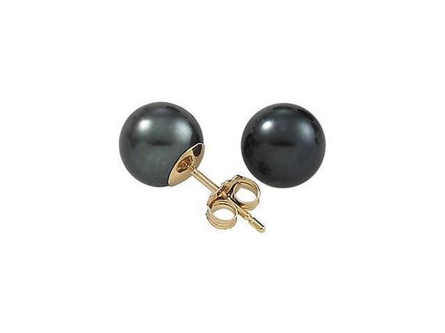 7mm Yellow Gold Black Cultured Pearl Earrings