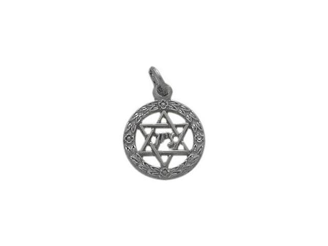10 Karat White Gold Star of David Jewish Pendant with Chain
