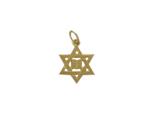 10 Karat Yellow Gold Star of David Jewish Pendant with Chain