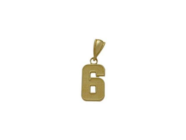14 Karat Yellow Gold Number 6 Pendant with Chain