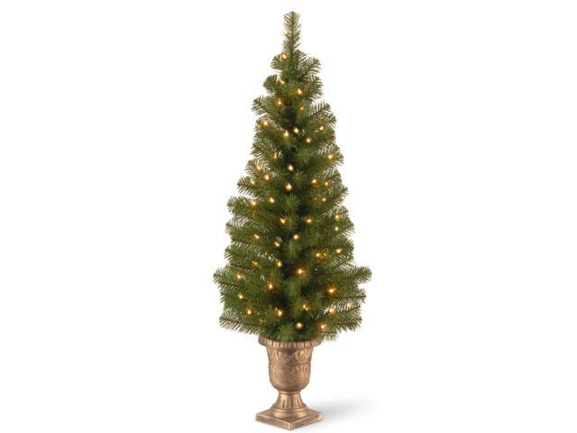 4 ft. Montclair Spruce Entrance Tree with Clear Lights