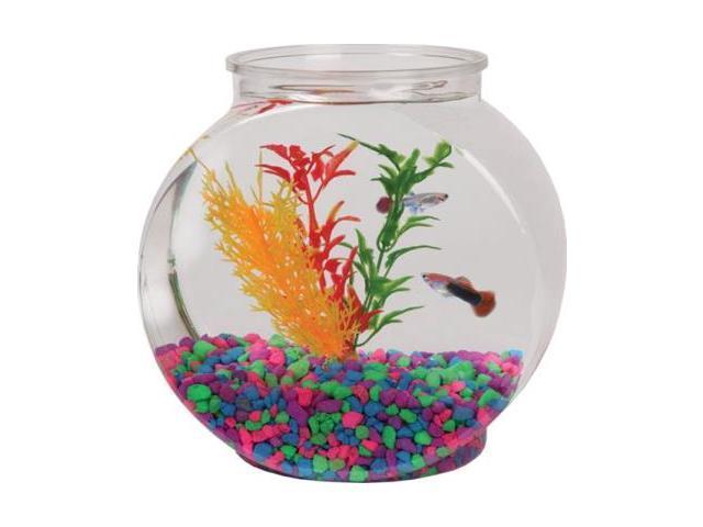 1 2 gal flat sided fish bowl for 10 gallon fish bowl