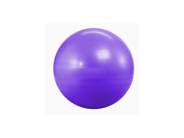 Anti-Burst Exercise Ball with Pump (55 cm) (Purple)