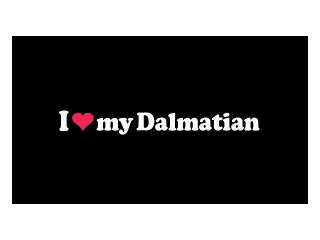 I love My Dalmatian Custom Decal Sticker 5.5 inch