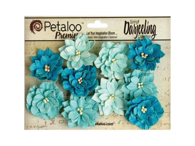 Darjeeling Teastained Dahlia Flowers 10/Pkg-Teal