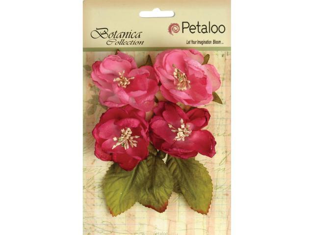 Botanica Blooms 4/Pkg-Fuchsia