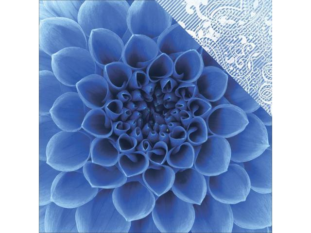 Colorways Sapphire Double-Sided Cardstock 12