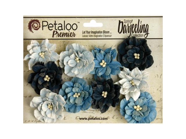 Darjeeling Teastained Dahlia Flowers 10/Pkg-Blue