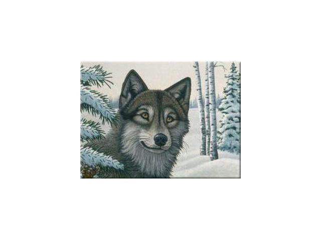 Snow Wolf Paint By Number Set