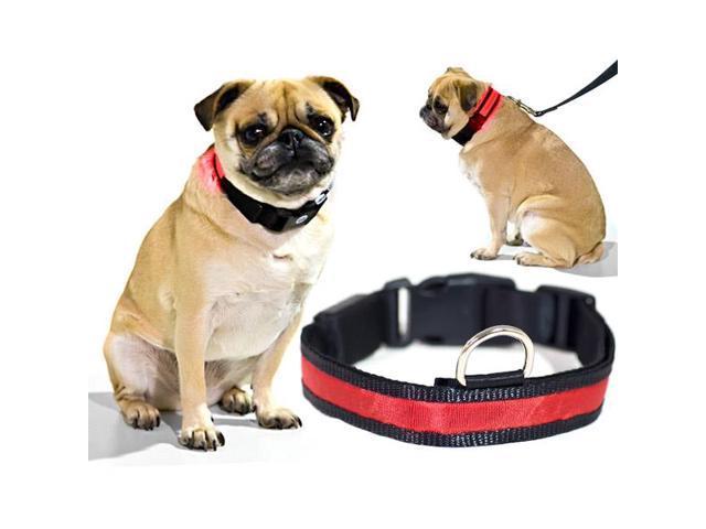 Red LED Light Dog Collar - Medium - Dog Pet Night Safety Fashionable Flashing Light Up Collar Nylon Large Adjustable