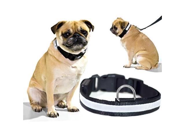 White LED Light Dog Collar - Large - Dog Pet Night Safety Fashionable Flashing Light Up Collar Nylon Large Adjustable