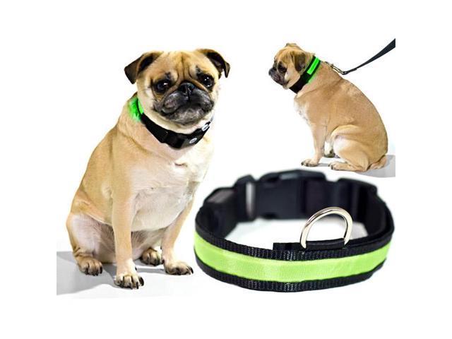 Green LED Light Dog Collar - Large - Dog Pet Night Safety Fashionable Flashing Light Up Collar Nylon Large Adjustable