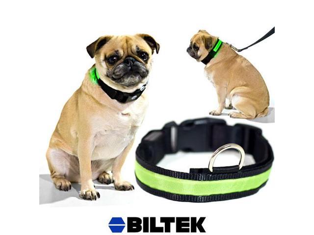 Green LED Light Dog Collar - X-Large - Dog Pet Night Safety Fashionable Flashing Light Up Collar Nylon Large Adjustable