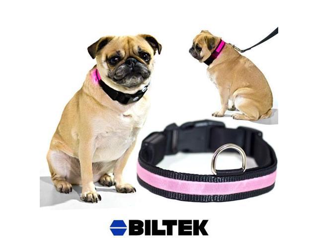 Pink LED Light Dog Collar - Medium - Dog Pet Night Safety Fashionable Flashing Light Up Collar Nylon Large Adjustable