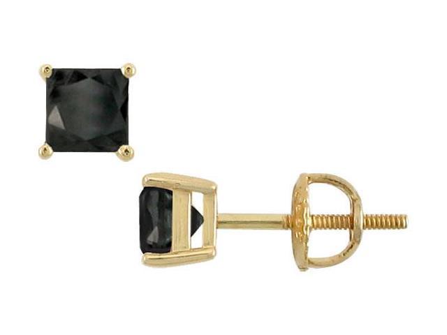 14K Yellow Gold  Princess Cut Black Diamond Stud Earrings  2.00 CT. TW.