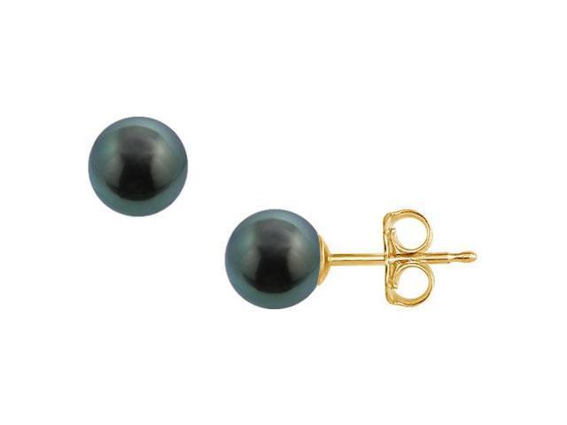 Tahitian Pearl Stud Earrings  18K Yellow Gold  8 MM
