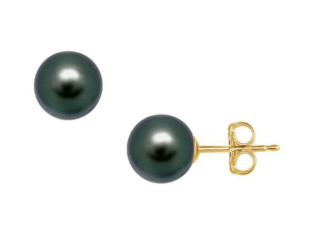 Akoya Cultured Pearl Stud Earrings  14K Yellow Gold  11 MM