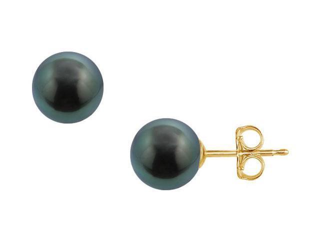 Tahitian Pearl Stud Earrings  18K Yellow Gold  13 MM