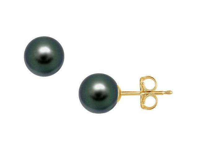 Tahitian Pearl Stud Earrings  18K Yellow Gold  10 MM