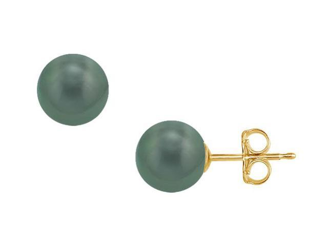 Tahitian Pearl Stud Earrings  18K Yellow Gold  11 MM
