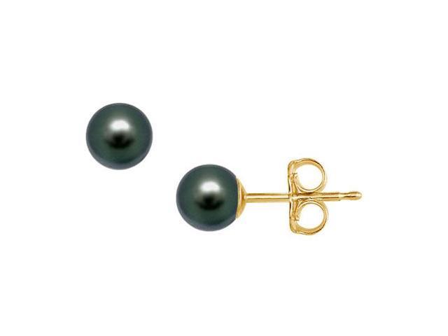 Akoya Cultured Pearl Stud Earrings  14K Yellow Gold  5 MM