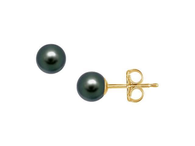 Akoya Cultured Pearl Stud Earrings  14K Yellow Gold  6 MM