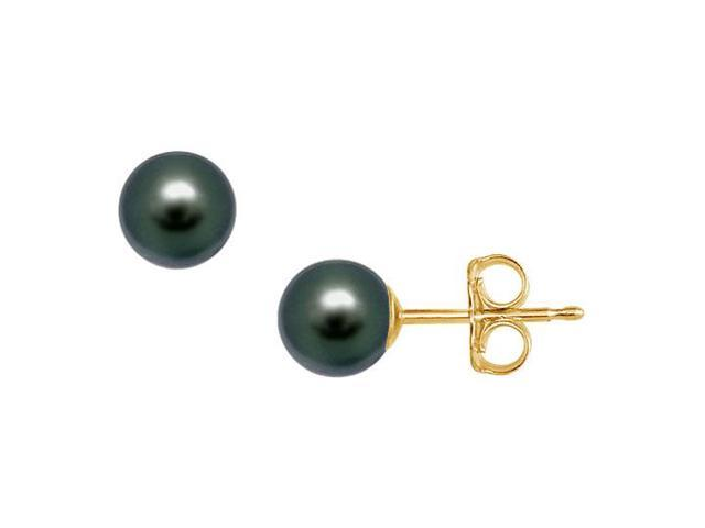 Freshwater Cultured Pearl Stud Earrings  14K Yellow Gold  7 MM