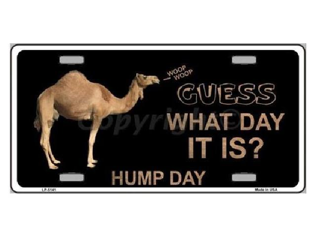 Hump Day Toys : Guess what day it is hump camel humor license plate