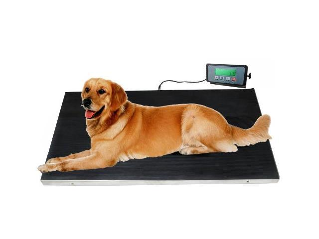 Angel POS 660 lbs VET Veterinary Platform Scale for Animal Pet Dog Cat Livestock w/FREE MAT
