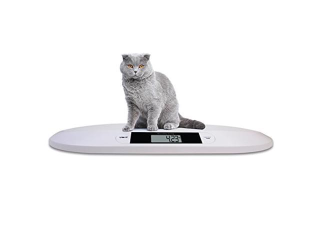 Angel POS Digital Portable small Pet Dog Cat Scale 44 lb x 0.22 lb weight weigh
