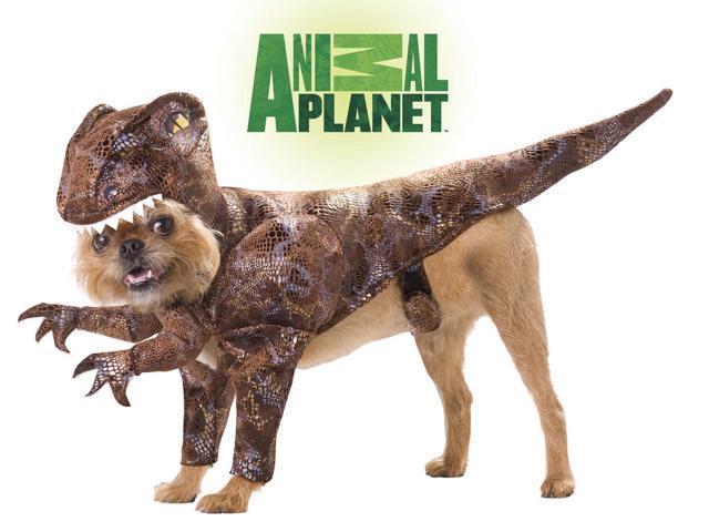 Animal Planet Raptor Dinosaur Dog Pet Costume X-Small