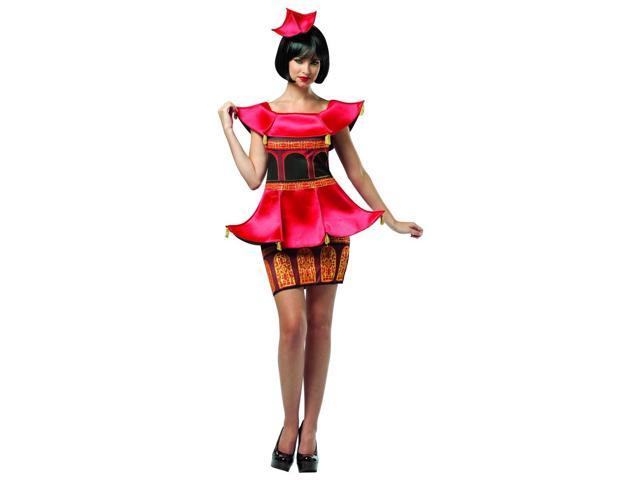 Asian Pagoda Costume Dress Adult One Size Fits Most
