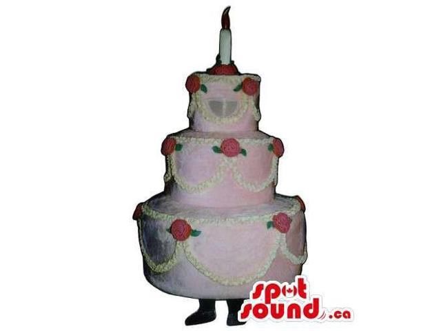 Customised Pink Cake Canadian SpotSound Mascot With A Candle And Roses