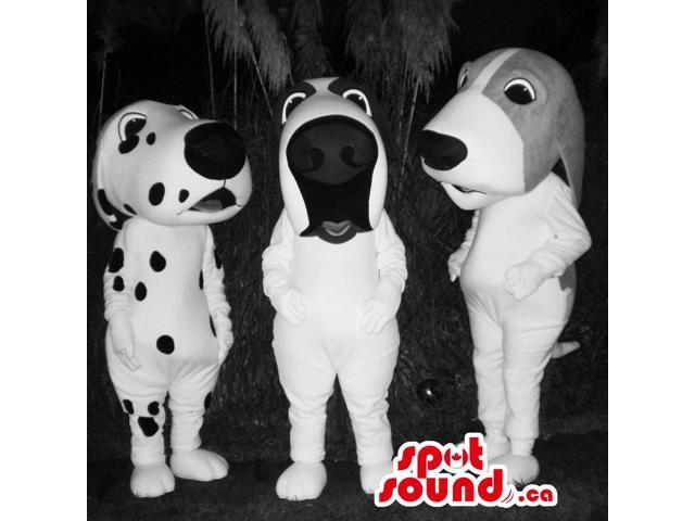 Three Various White And Black Dog Pet Plush Canadian SpotSound Mascots