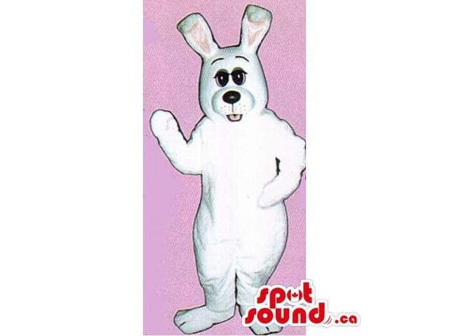 Customised All White Rabbit Canadian SpotSound Mascot With Large Black Eyes