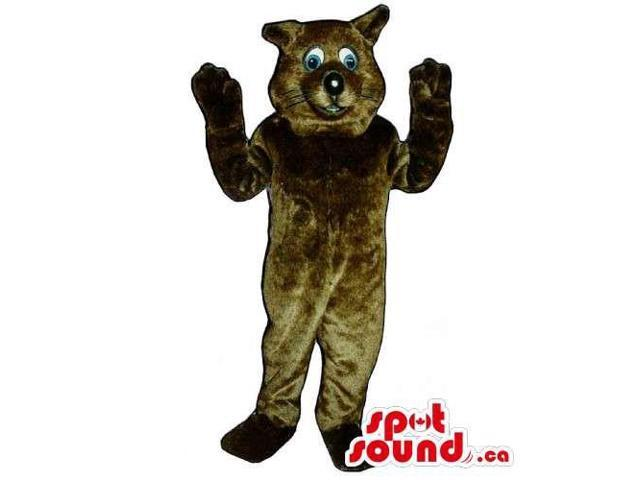 Customised Dark Brown Cat Pet Canadian SpotSound Mascot With Blue Eyes