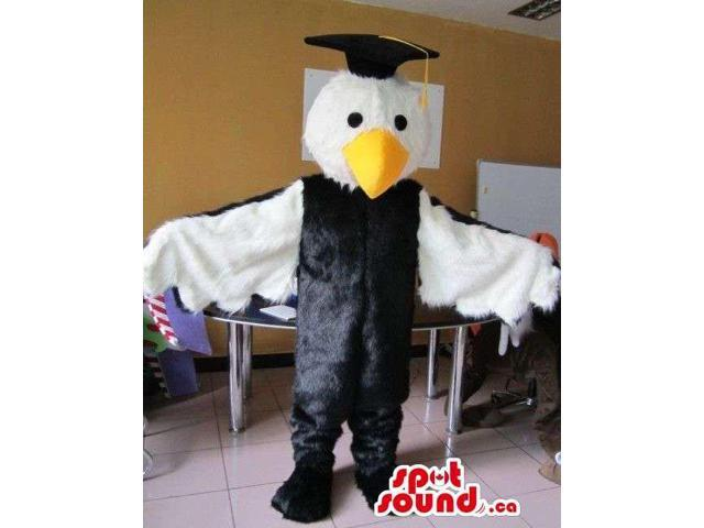 Cute Owl Animal Bird Plush Canadian SpotSound Mascot Dressed In A Graduation Hat