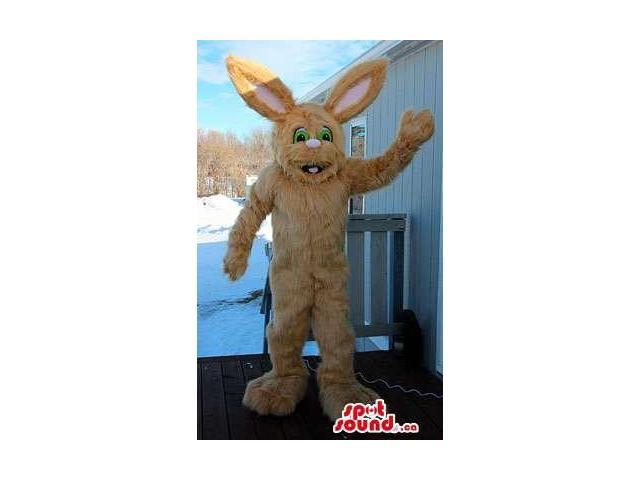 Large Peculiar Woolly Rabbit Canadian SpotSound Mascot With Green Eyes And Pink Ears