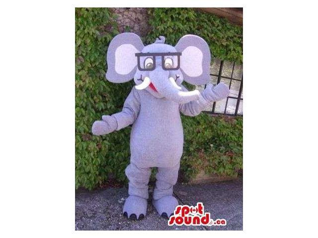 Peculiar Grey Elephant Canadian SpotSound Mascot Dressed In A Pair Of Squared Glasses