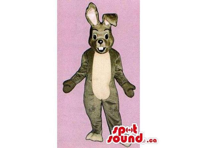 Customised All Brown Rabbit Canadian SpotSound Mascot With A Beige Belly