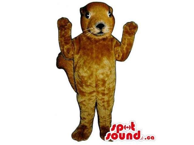 Customised All Brown Squirrel Animal Canadian SpotSound Mascot