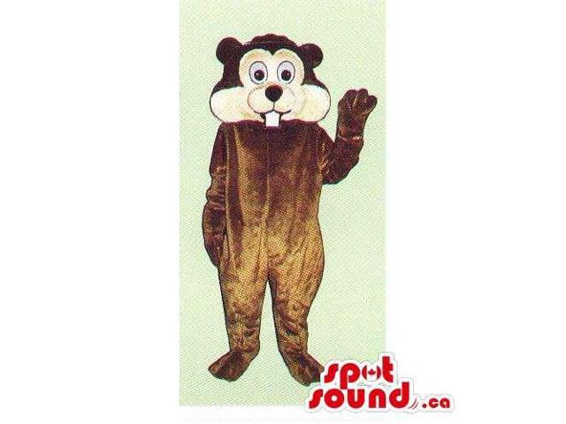 Customised All Brown Chipmunk Canadian SpotSound Mascot With A Peculiar Face