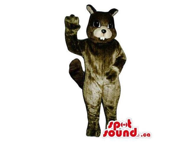 Customised All Dark Brown Chipmunk Animal Canadian SpotSound Mascot