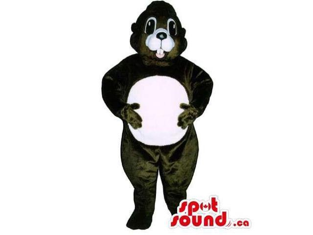 Customised Dark Brown Chipmunk Canadian SpotSound Mascot With Round White Belly