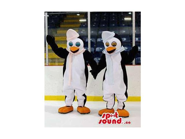 Peculiar Pair Of Penguins With Winter Hats And Scarves
