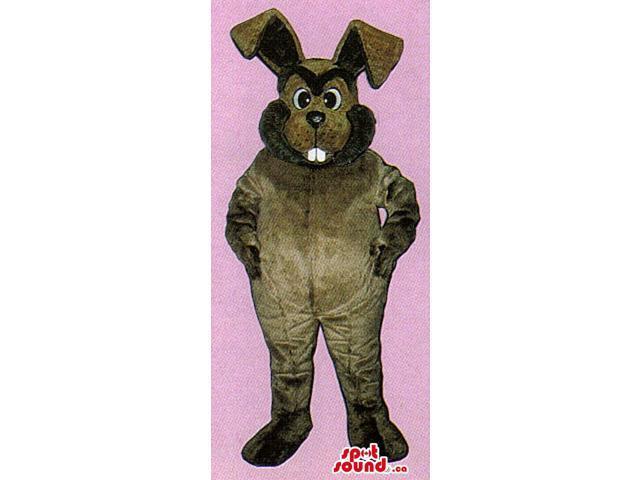 All Dark Brown Rabbit Plush Canadian SpotSound Mascot With A Black Beard
