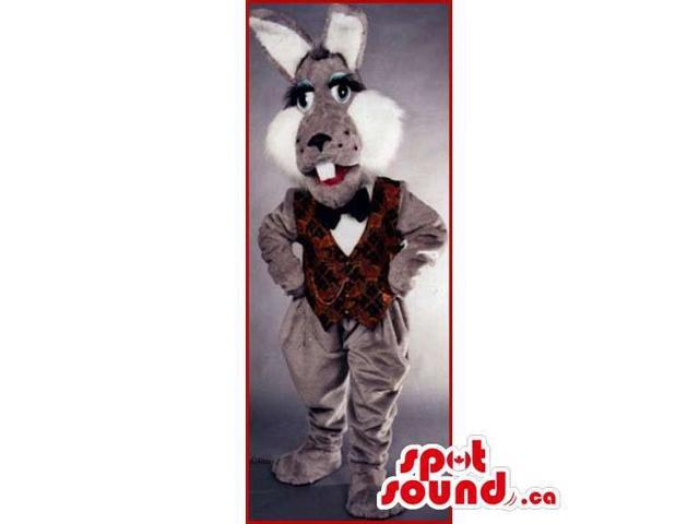 Grey Rabbit Canadian SpotSound Mascot Dressed In An Elegant Vest And Bow Tie