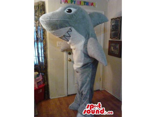 Cute Large Grey And White Shark Plush Canadian SpotSound Mascot With Cool Smile