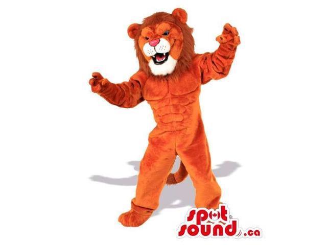 lion animal brown 1366x768 - photo #14